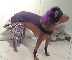 How to Make a Hit Girl Halloween Costume for Your Dog