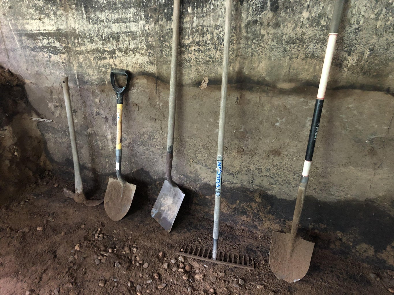 Planning the Root Cellar Hole