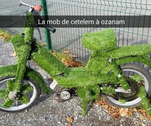 The Grass Moped