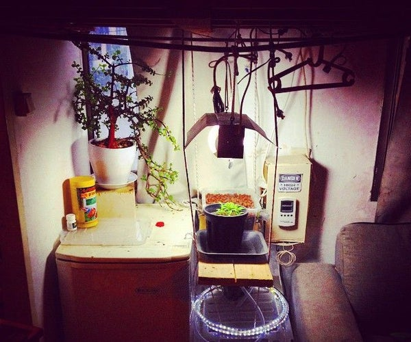 Grow Your Own - Indoor Hydro/Aquaponic/soil  System
