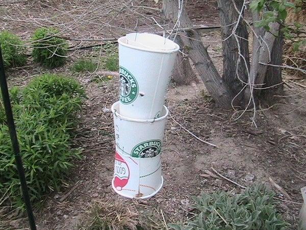 Coffee Cup Bird Feeder/Water