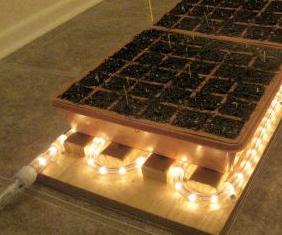 Winter Heating Indoor Garden