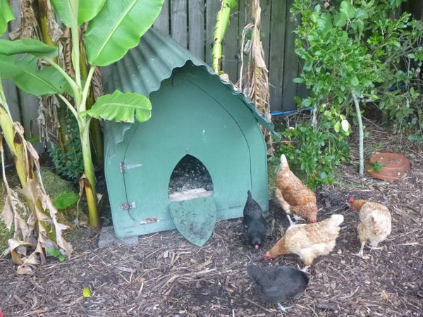 Build a Gothic Chicken Coop (or Dog Kennel or Pig House or ...)