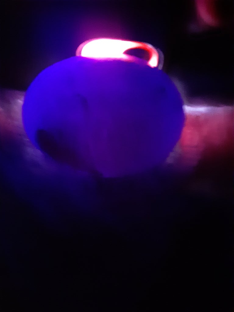 As You Can See the Egg Is Able to Glow in the Dark With Light
