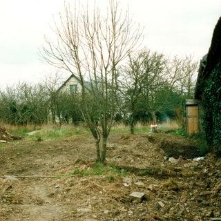 Garden West to East.jpg