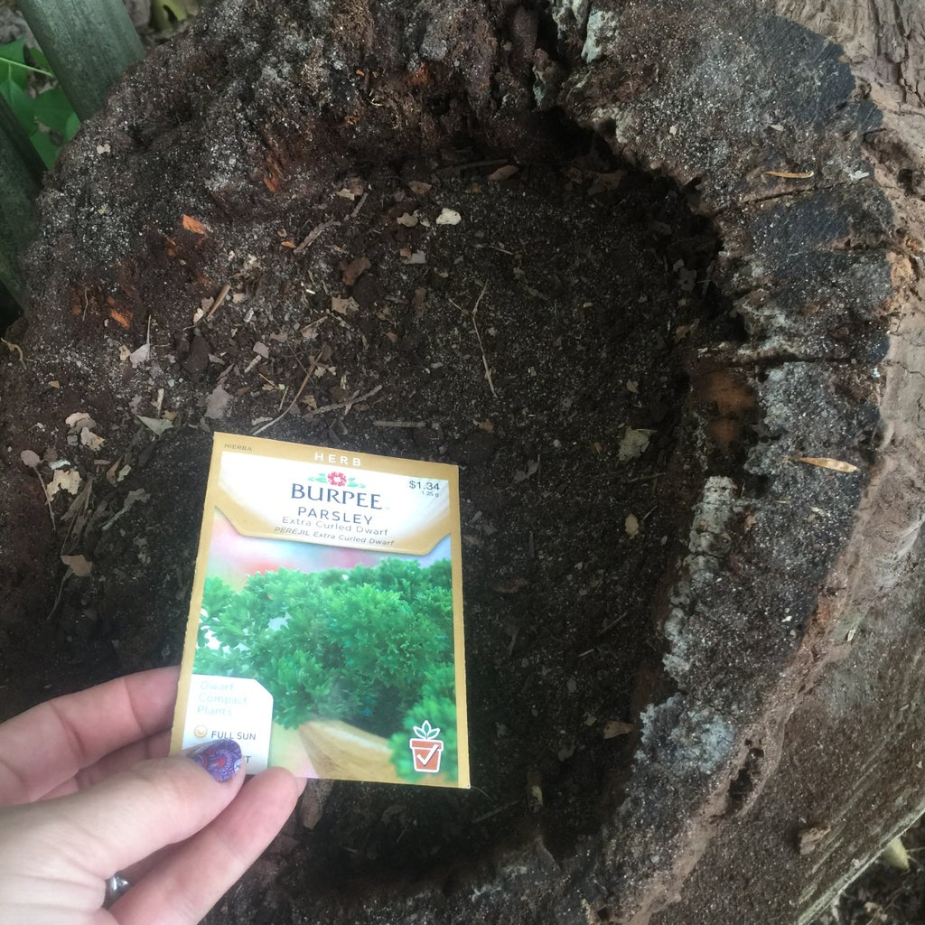 Fill With Soil and Seeds