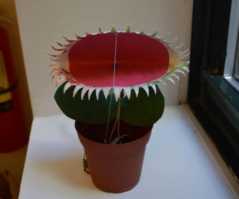 Venus Fly Trap Toy powered by Intel Edison