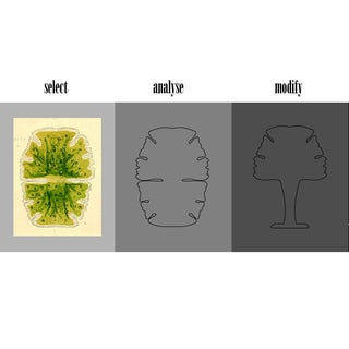 3 ideas-02.jpg