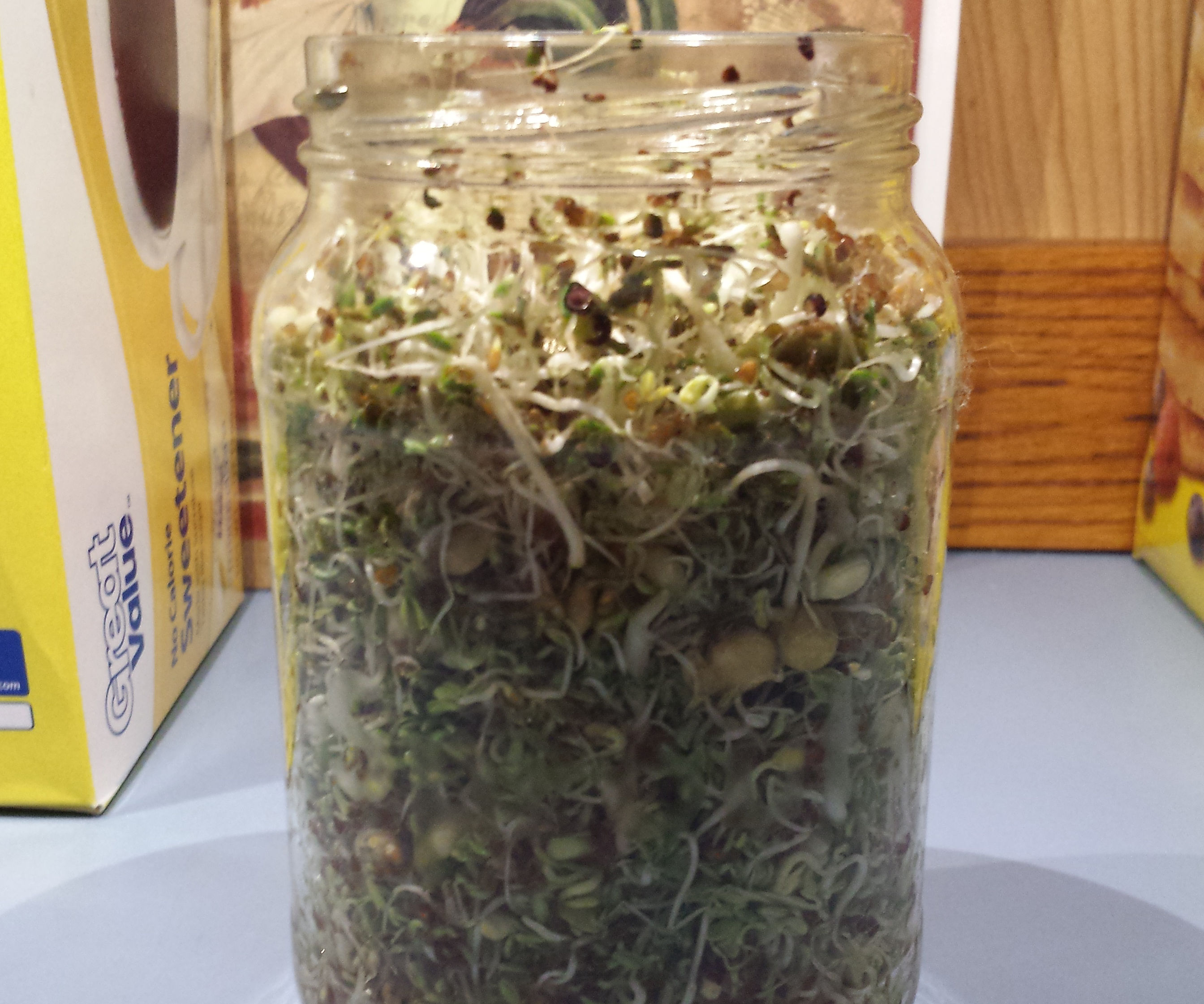 How to grow sprouts in a glass jar