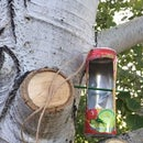 Recycled Can Bird Feeder