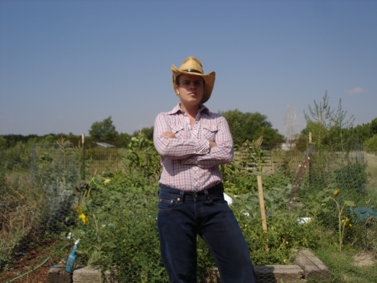 Grow organic food without spending $