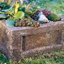 How to Make a Garden Trough (Hypertufa Planter)