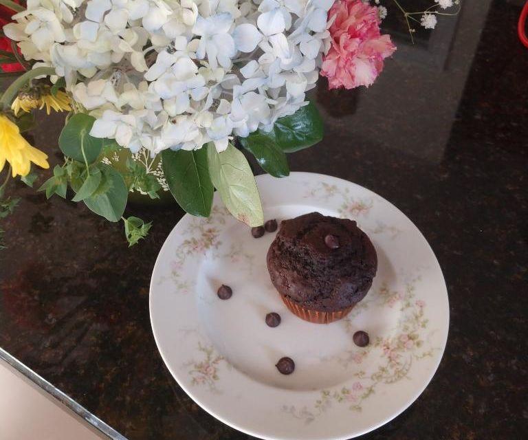 Intro: Chocolate Chocolate Chip Muffins From Disney's Andi Mack