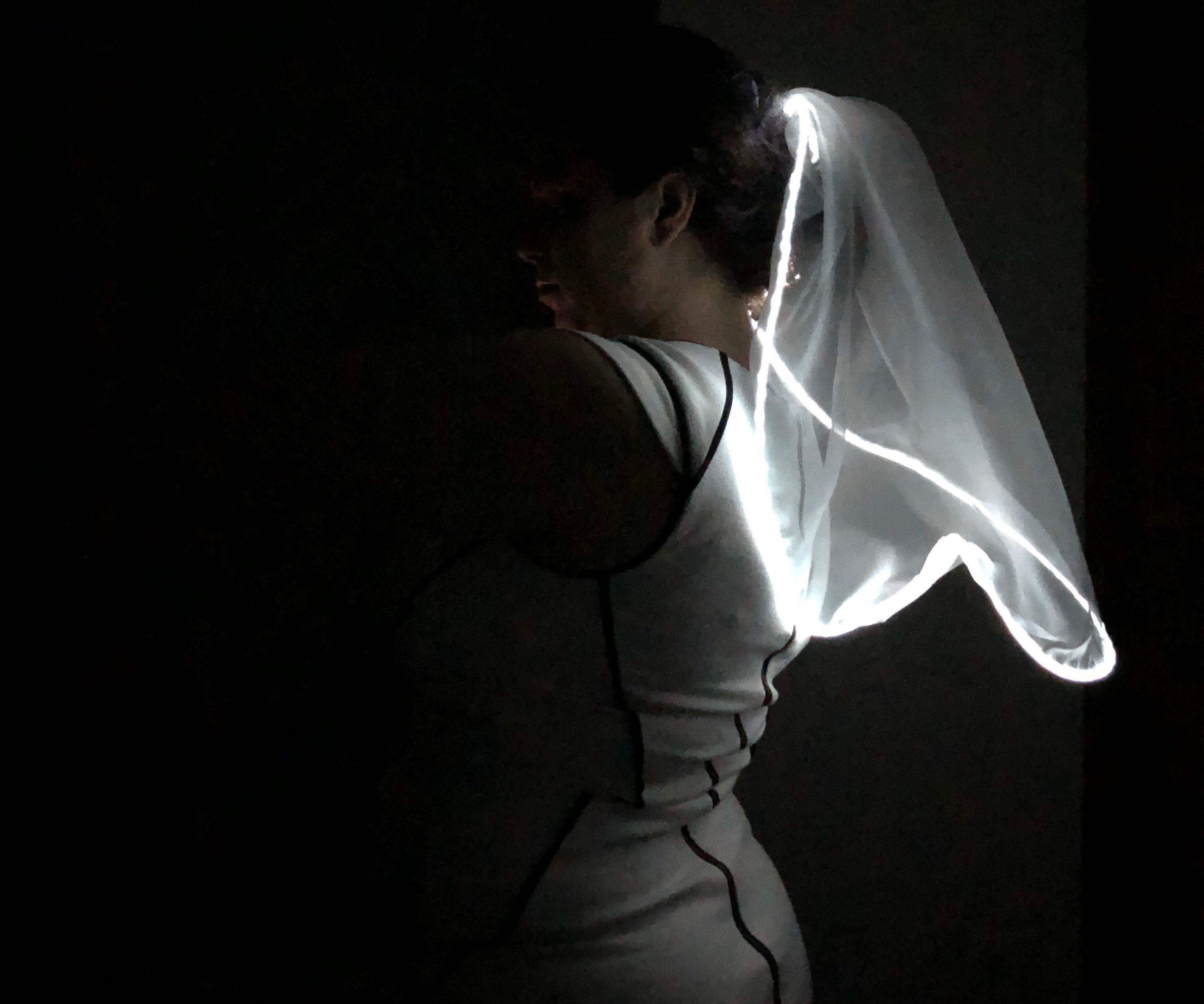 EL Wire Bridal Veil