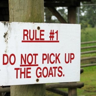rule-1--do-not-pick-up-goats.jpg