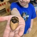 Wood Carving for Beginners and Kids : Pocket Hedgehog