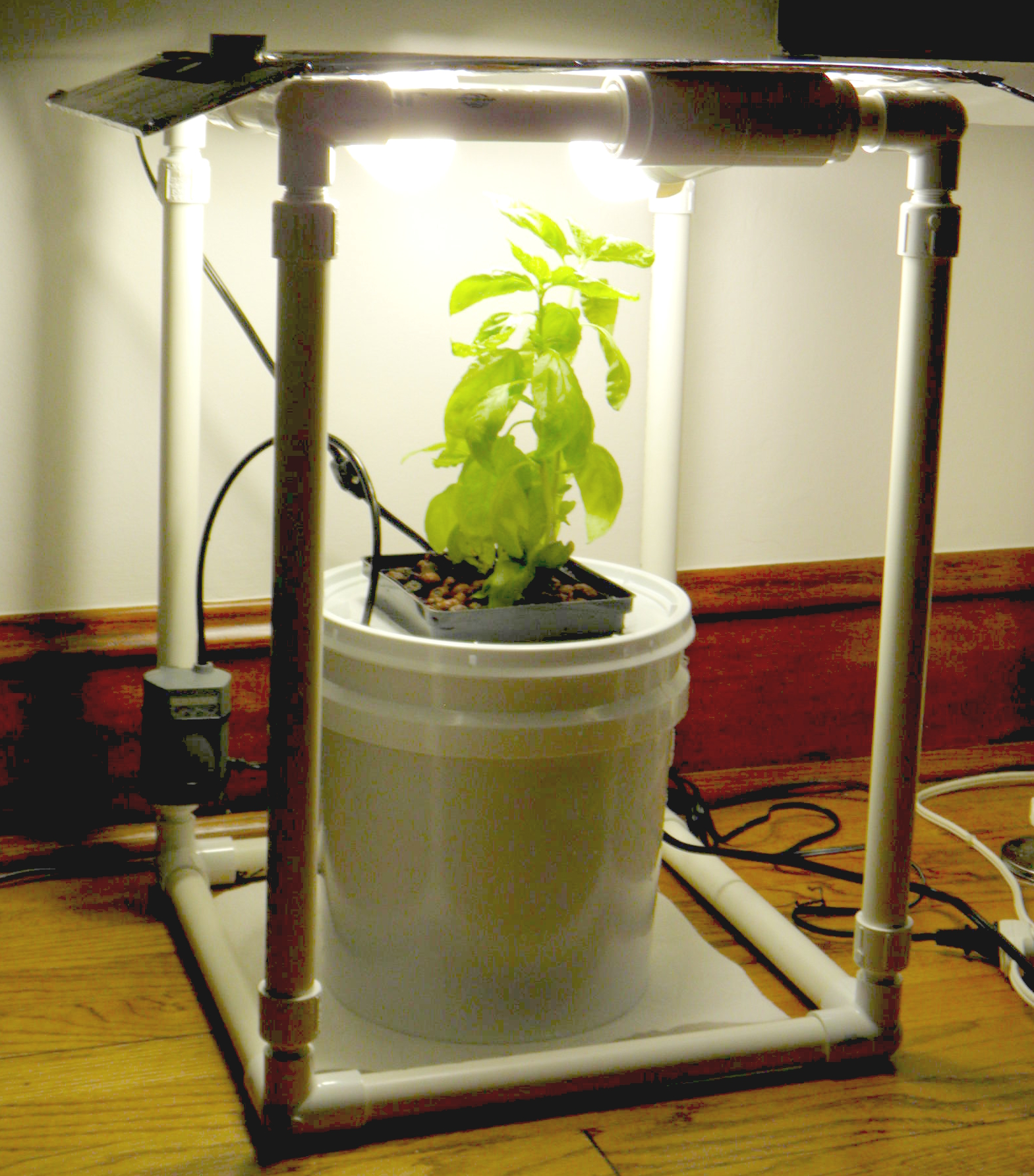 The Basil Box - Compact and Affordable Hydroponic Deep Water Cultivation