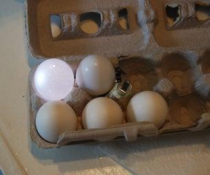 Egg Carton Light