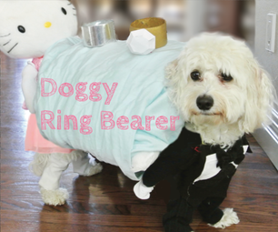 Ring Bearer Dog Illusion Costume