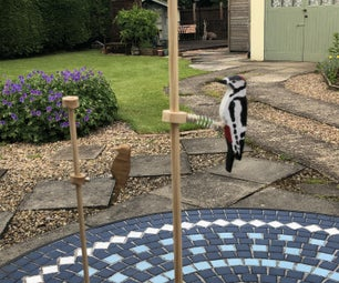 Woodpecker on a Pole(Updated)