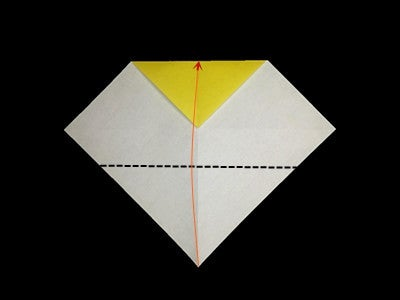 Fold the Bottom Corner to the Center Point of the Upper Edge.