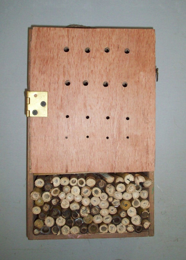 Beneficial Bug Houses