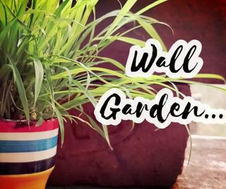 DIY Wall Garden From Broken Bricks