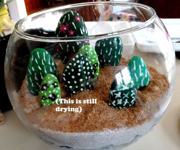 Rock Cacti Terrarium