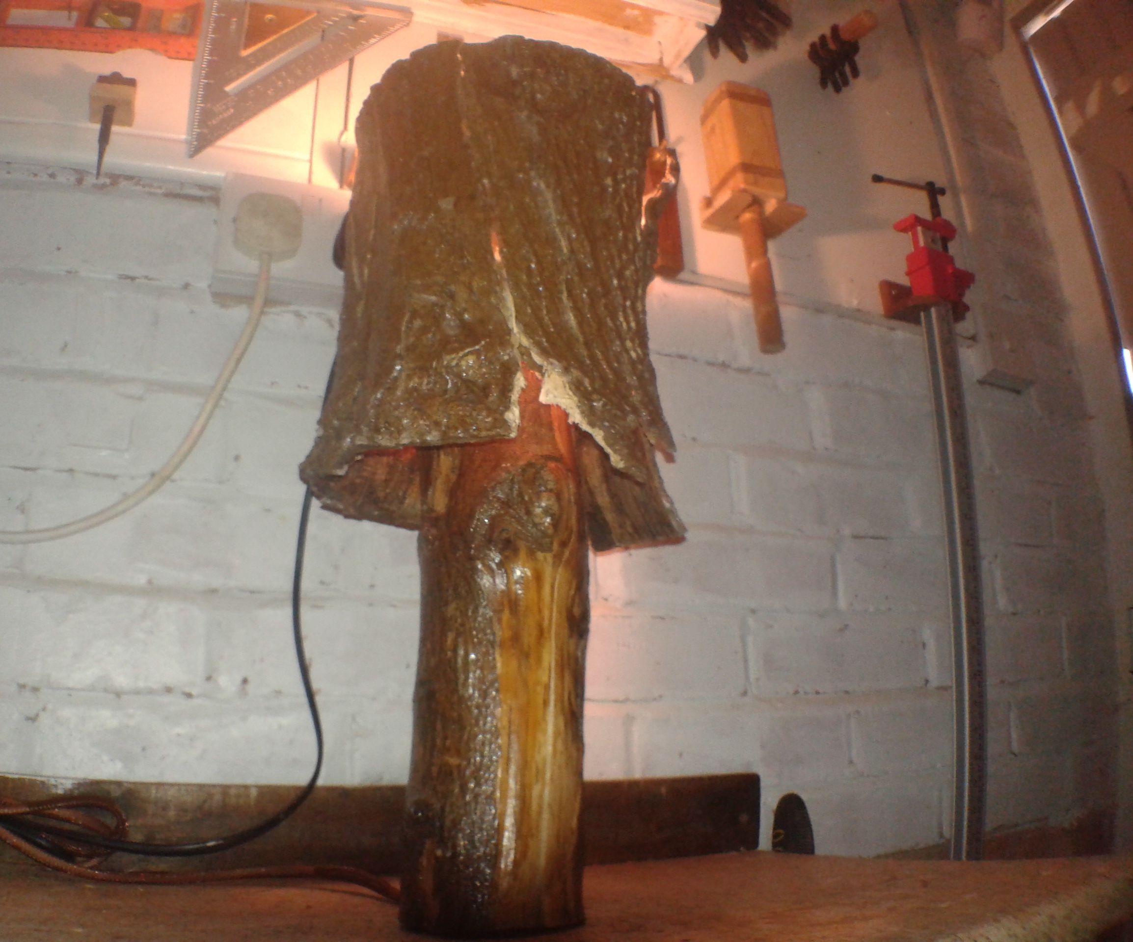 Log Bark Lamp