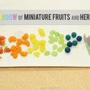 Easy Miniature Clay Fruit and Herbs - Rainbow