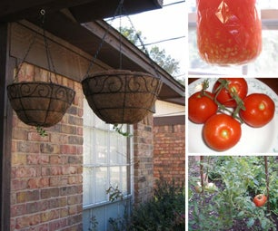 Gardening on a Balcony