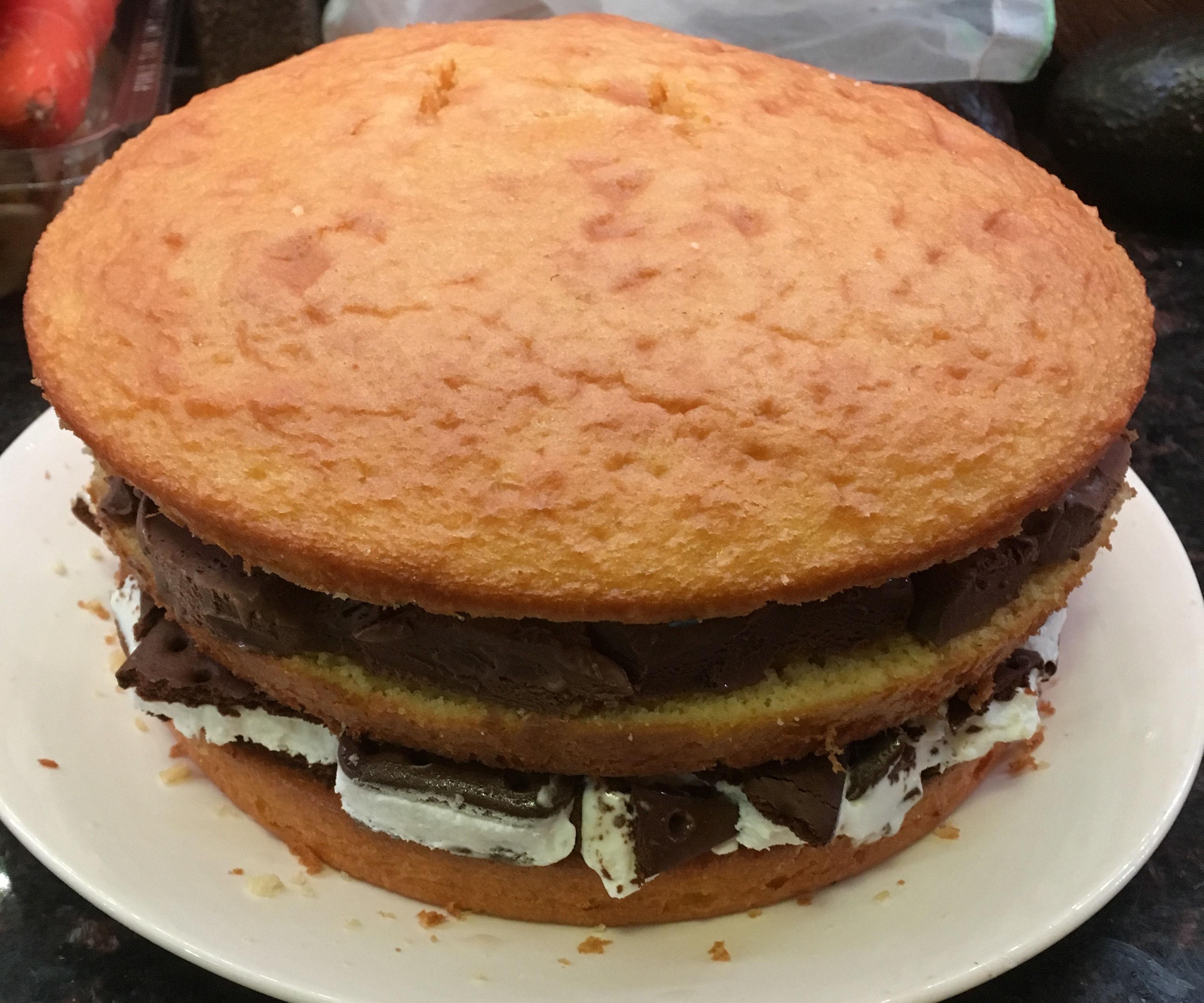 Ice Cream Sandwich & Ice Cream Cake
