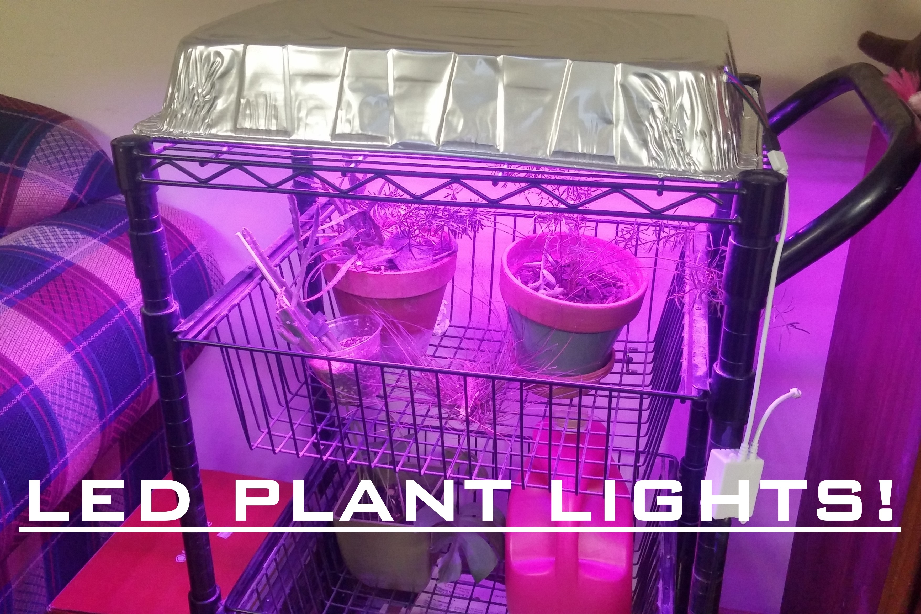 LED Grow light for indoor plants for $30! Easy!