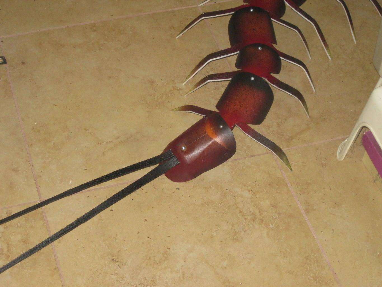 Assembling the Centipede