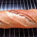 Quick ? Sourdough Bread