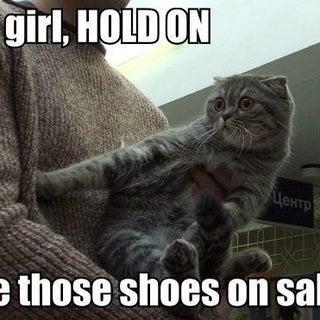 SHOES ON SALE CAT.jpg