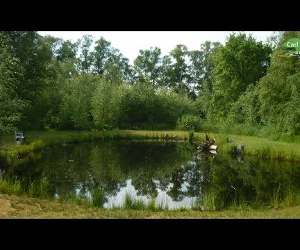 HOW TO BUILD ALL NATURAL POND WITHOUT LINER   LOW COST+MAINTENANCE   YOUR OWN BIG BACK YARD WATER HABITAT
