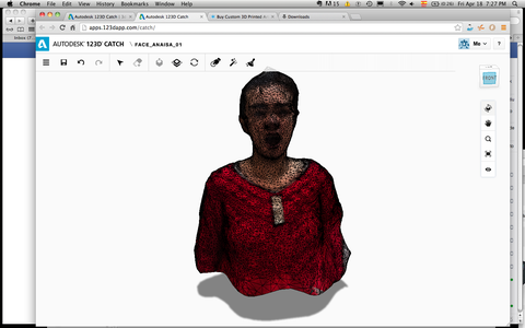 3D Scan of the Face