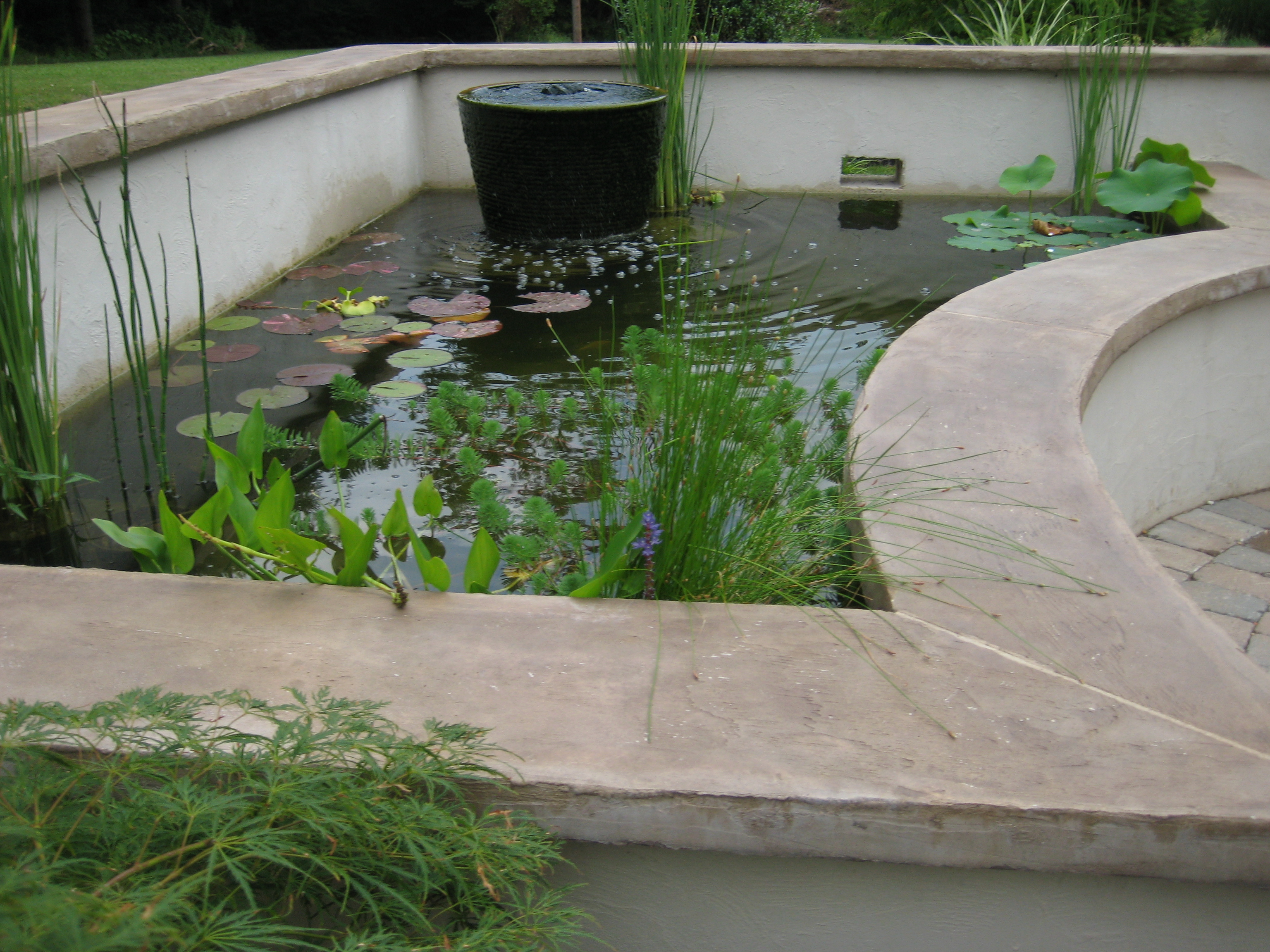 The Ultimate Koi Pond