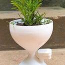 Self Watering Sand Clock Indoor Planter