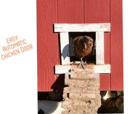 Easy Automatic Chicken Door