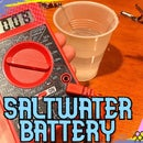 Saltwater Battery + Lesson Plan