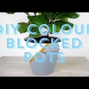DIY Colour Blocked Pots