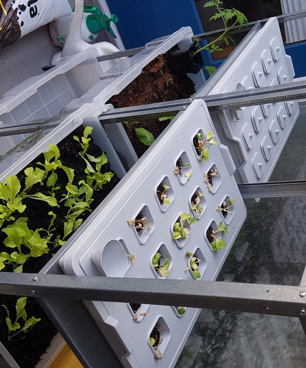 Plant Shelves Growing System