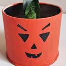 Halloween Pumpkin Planter