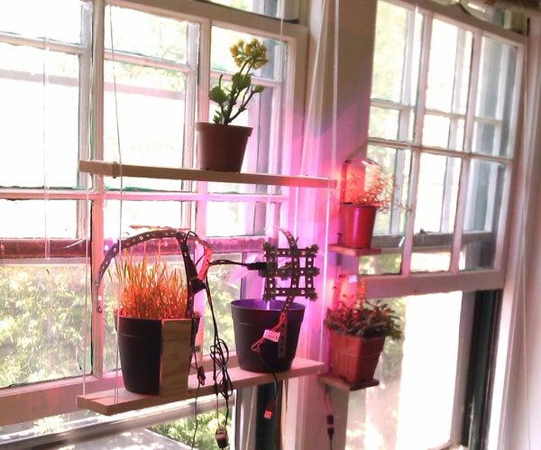 Window Gardening
