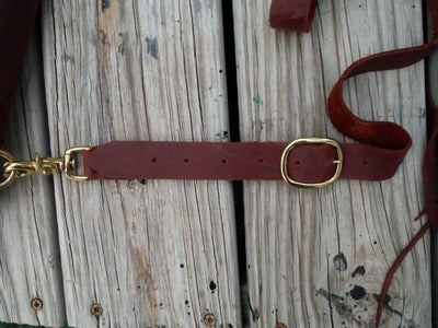 Straps and Buckles