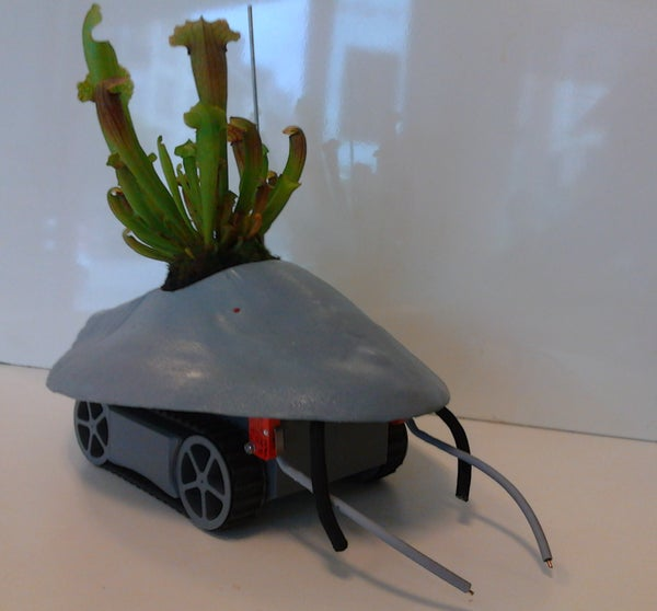 Plant Host Drone