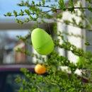Easy Easter Outdoor Decor