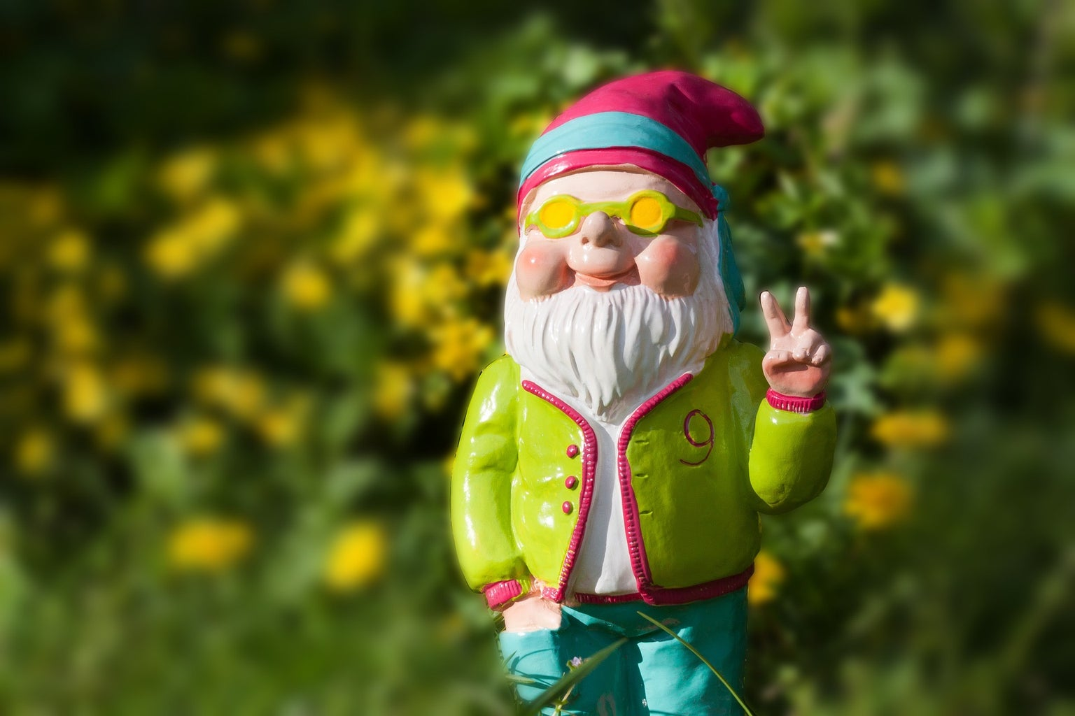May Your Garden Bring You Much Luck and Joy!